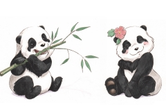 Lily and Lee Panda