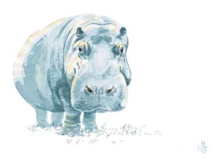 Hippo--Water Color